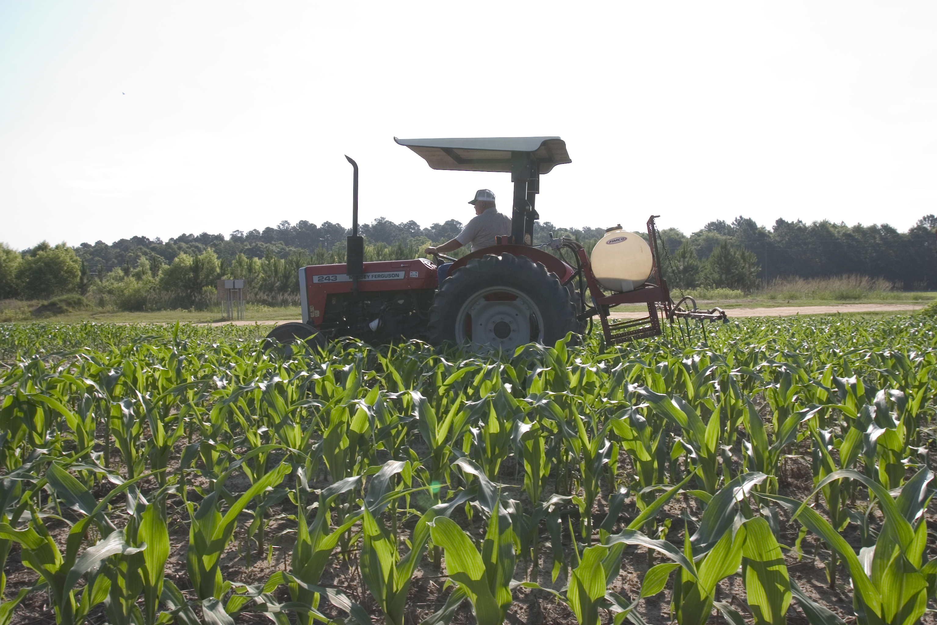 Critical pesticide application training for pest control professionals and producers will remain online this year.