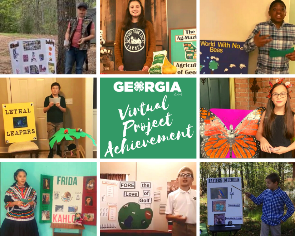 Georgia 4-H 1st Vistual Project Achievement