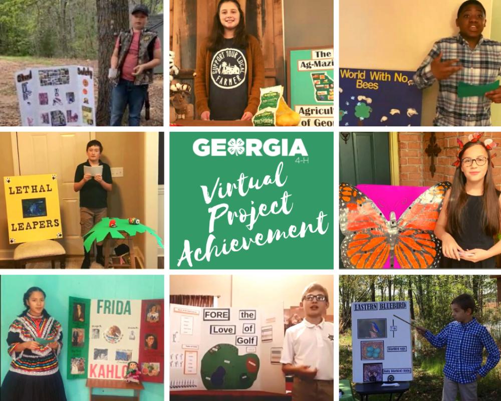 Georgia 4-H 1st Vistual Project Achievement