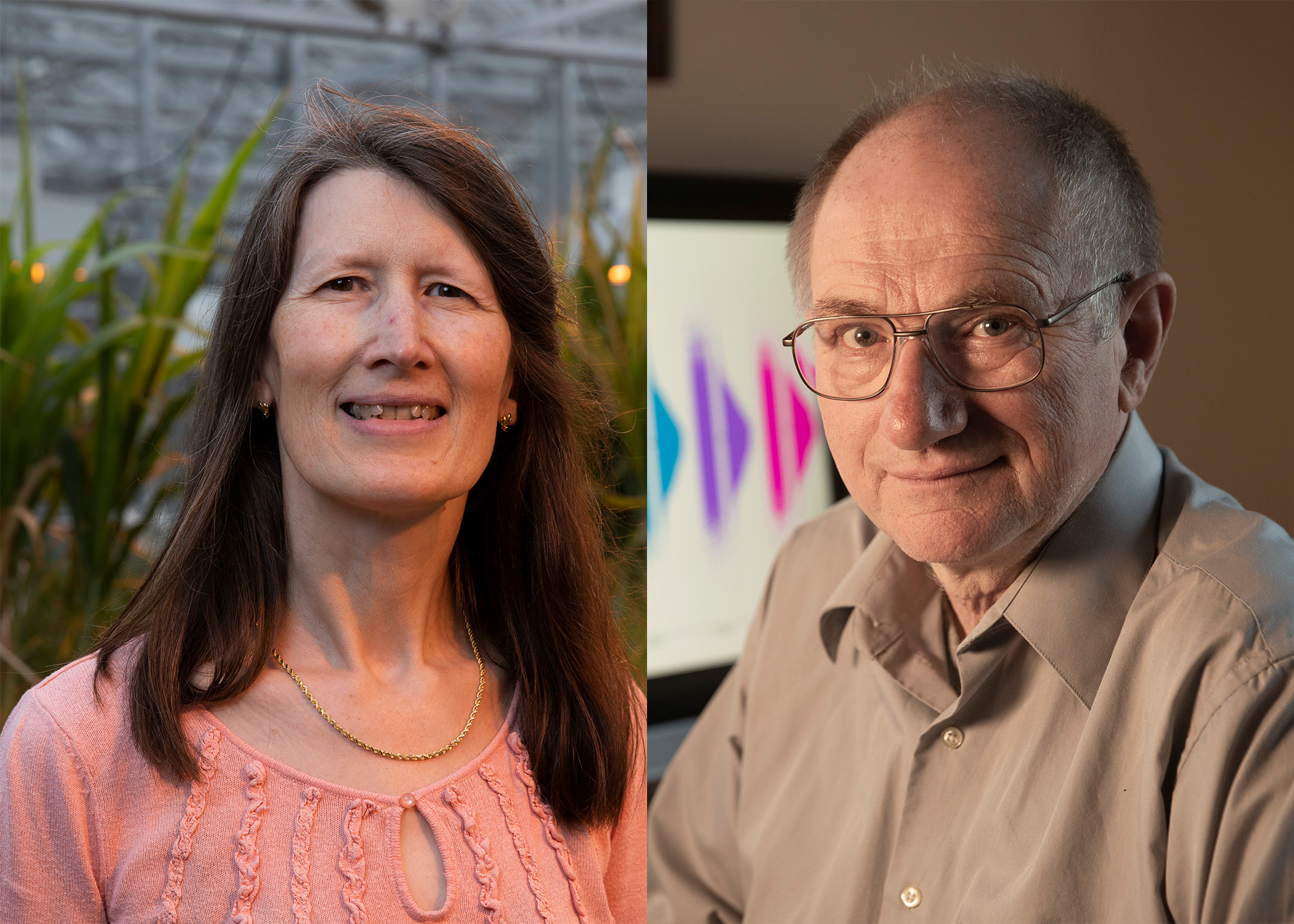 The title of Distinguished Research Professor is awarded to faculty who are internationally recognized for their original contributions to knowledge and whose work promises to foster continued creativity in their discipline. Katrien Devos and Ignacy Misztal are two of the 2020 recipients.