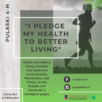 Pulaski County 4-H online healthy living resources are posted every Monday, Wednesday and Friday.