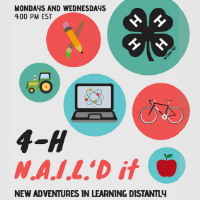 Georgia 4-H Southwest District's N.A.I.L.'d It interactive series is offered Mondays and Wednesdays online.