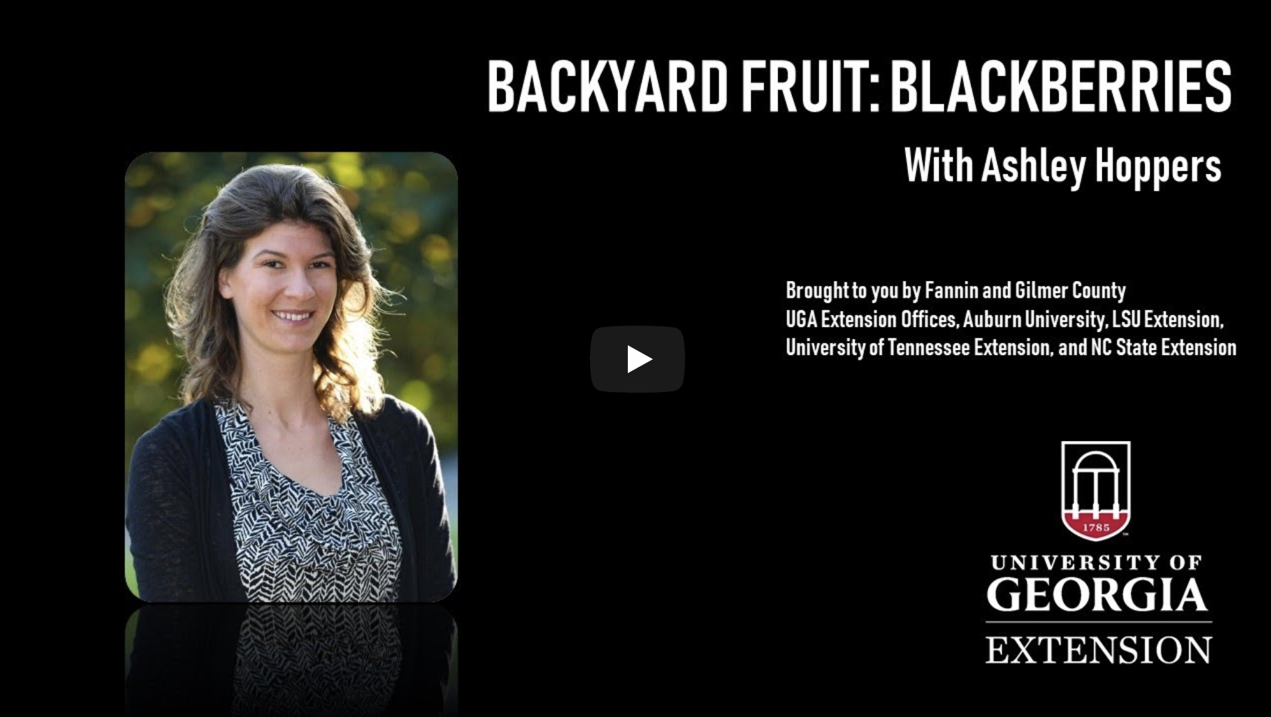 Although a bit of a challenge to switch to creating webinars for otherwise hands-on activities, UGA Extension Agent Ashley Hoppers finds the audience for the backyard fruits webinar series she organized is far larger than any in-person classes she has held in the past. She is one of many faculty members that began reaching new clientele through online delivery.