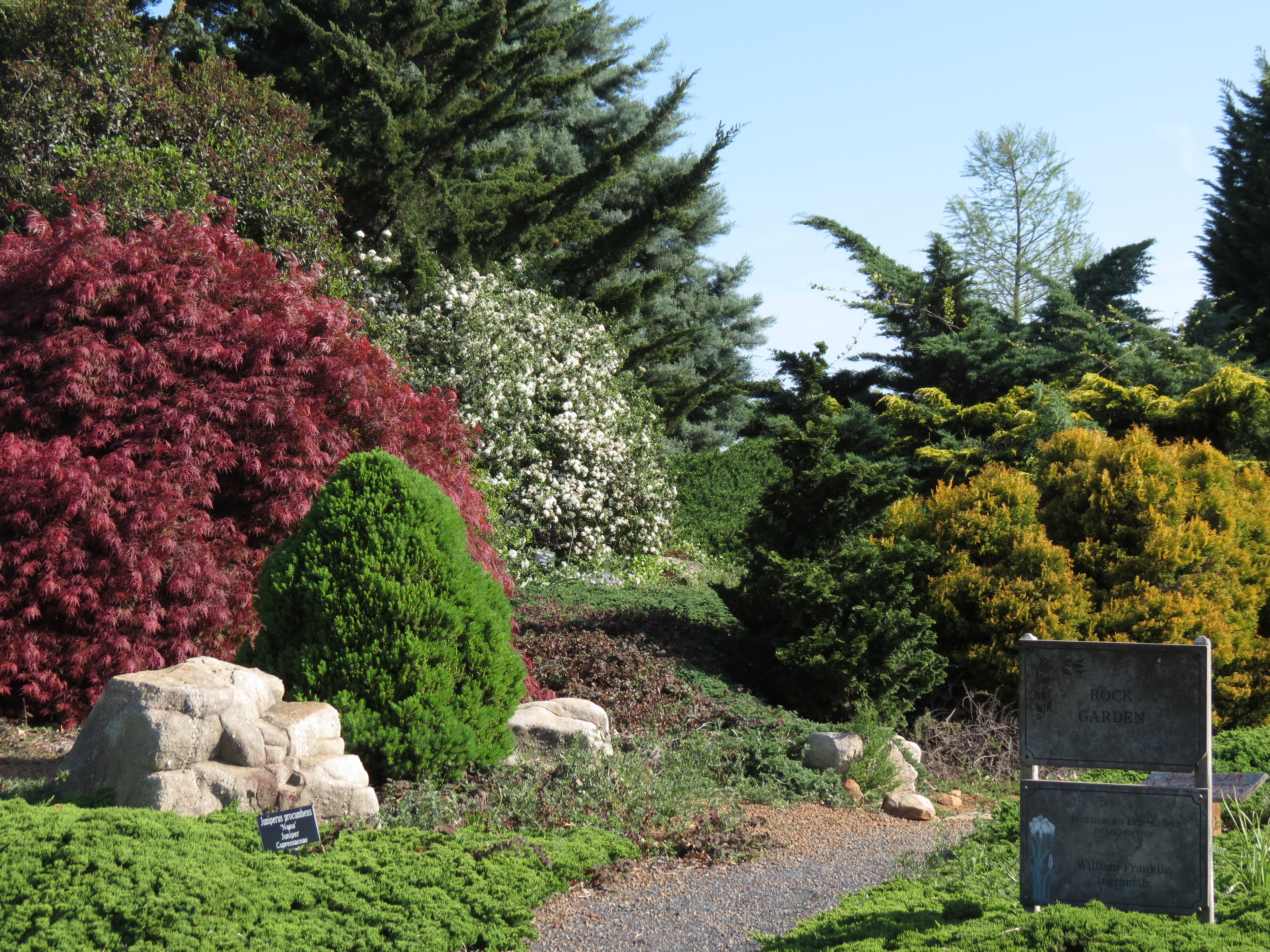 Evergreen and deciduous plants of different colors and forms can be used together to create a visually appealing landscape.