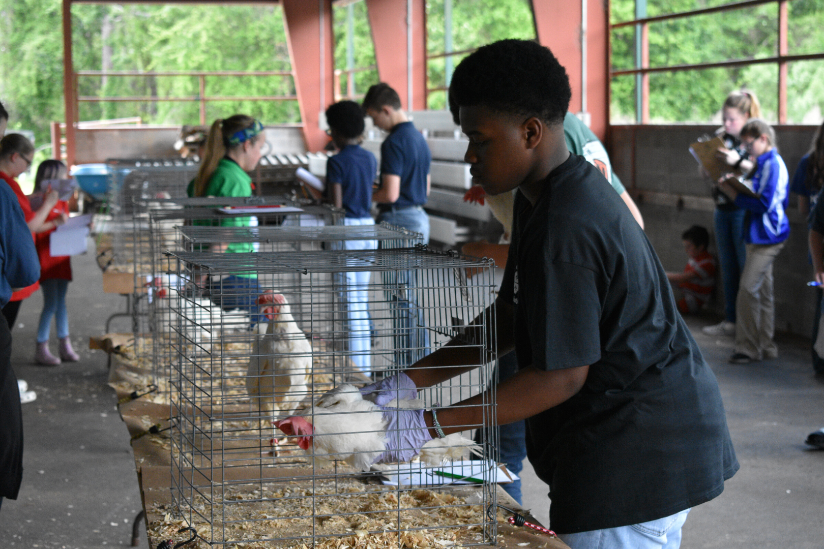 The Georgia 4-H State Poultry Judging Contest provides the opportunity for youth to learn and understand the standards used in poultry and egg production. (Photo from 2019)