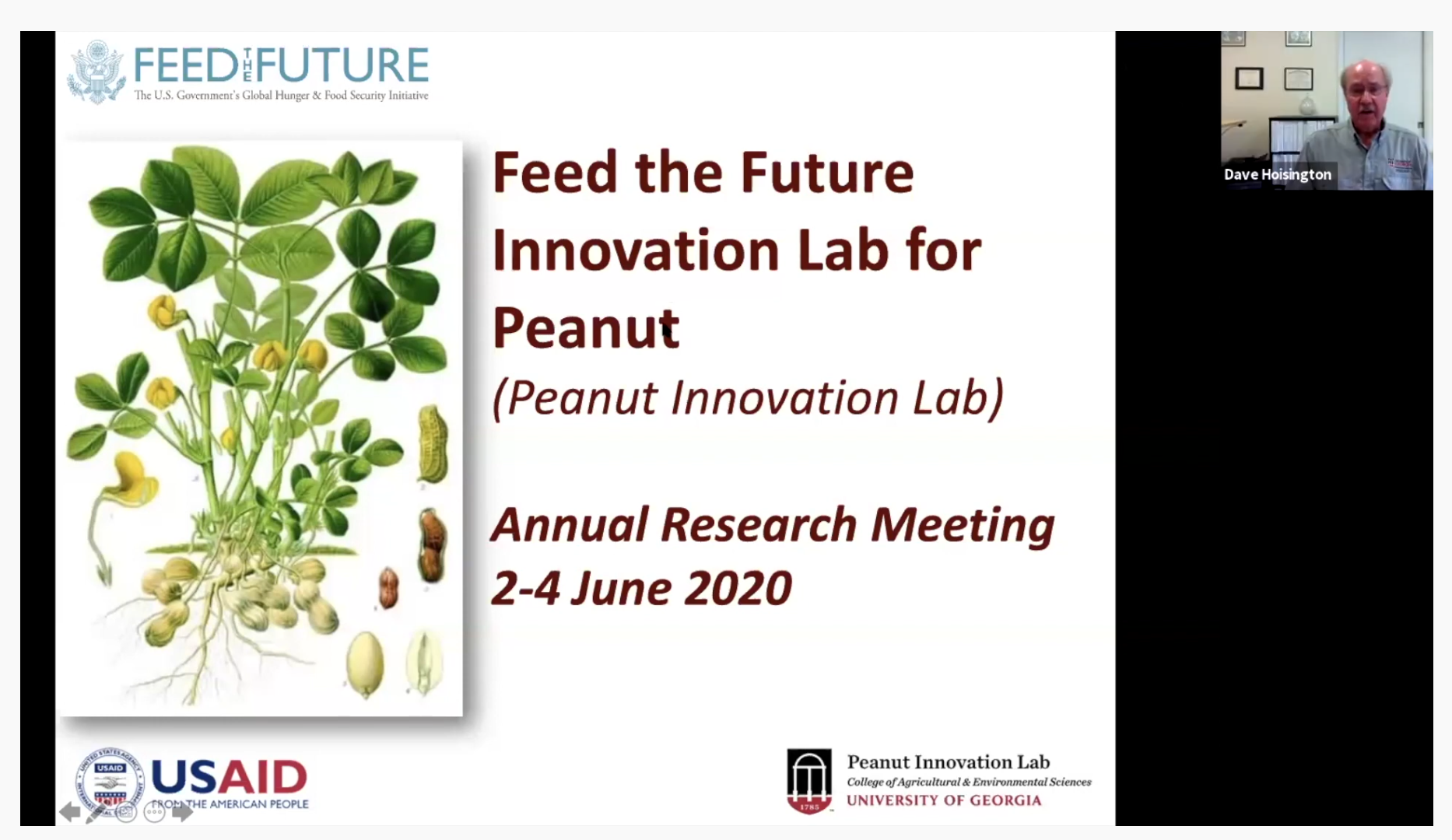 The Peanut Innovation Lab at UGA recently held its annual meeting online. More than 100 scientists and students from around the world attended.