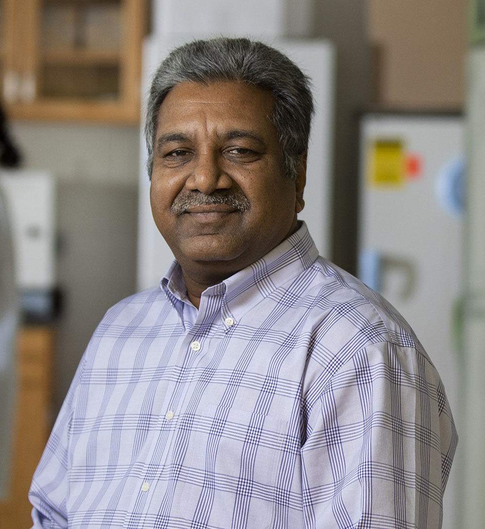 John Bekkers Professor of Poultry Science Harshavardhan Thippareddi has spent his research career focused on improving productivity, processing yields, and using underutilized poultry meats while assuring the quality and microbiological safety of poultry and poultry products.