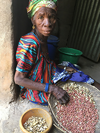A woman shells peanuts in a rural village in Kaolack region of Senegal in February 2020. Women often bear responsibility both for reproduction (caring for children) and production (growing crops), and since peanut is grown primarily by women, researchers wonder whether time-strapped women are more or less likely to adopt new technologies in agriculture. Researchers from the University of California-Santa Barbara, the University of Georgia and Gaston Berger University in Senegal conducted an ethnographic assessment of women's lives in Senegal earlier this year and plan to implement a system next year that will use biometric devices and voice recorders to capture a broader, more objective view of the work that takes up women's time. (Photo by Jacqueline Banks/UC-Santa Barbara)