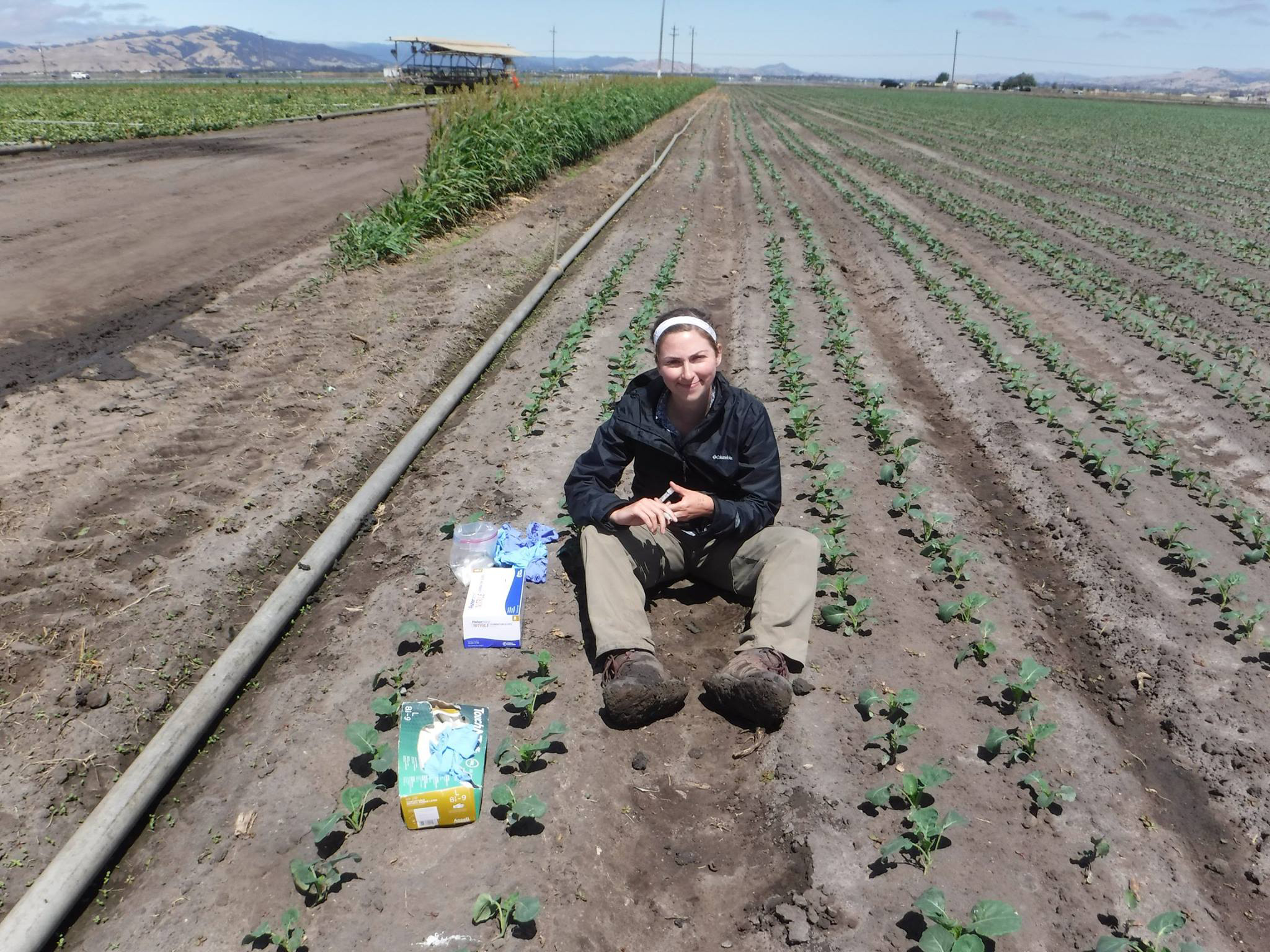 Smith seated at a research plot, studying the effects of wildlife on food safety.