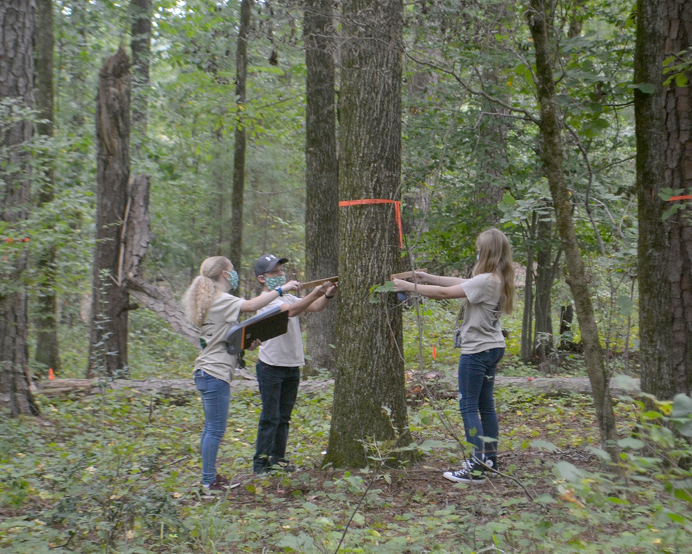 Participants test their science-based knowledge, critical thinking skills and skills with specialized forestry tools.