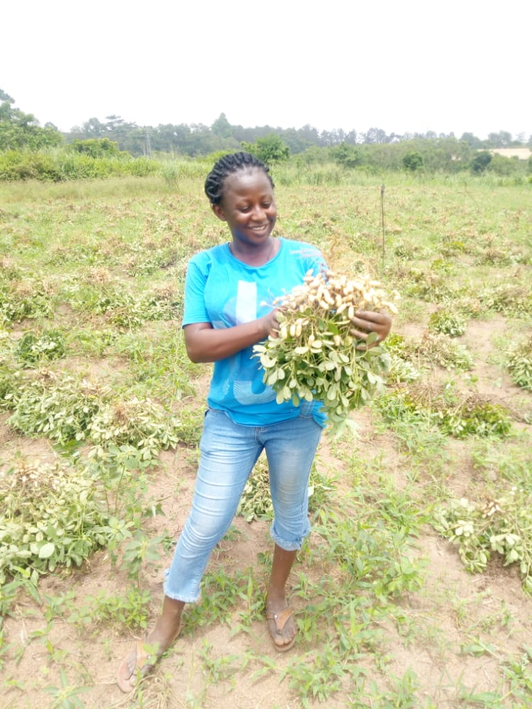 Jennifer Abogoom studies at Kwame Nkrumah University of Science and Technology (KNUST) in Kumasi, where she is pursuing a master's degree in seed science and technology and investigating the consistency of groundnut seed that farmers use.
