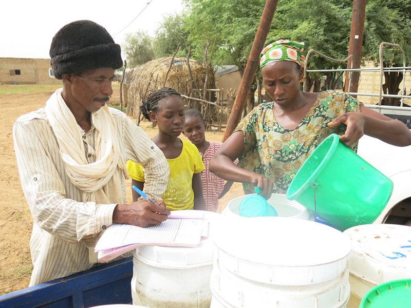 Senegal relies on importing dairy products to meet the country's needs, but there is significant potential to enhance economic development in rural areas by supporting small dairy producers, who are predominantly women.
