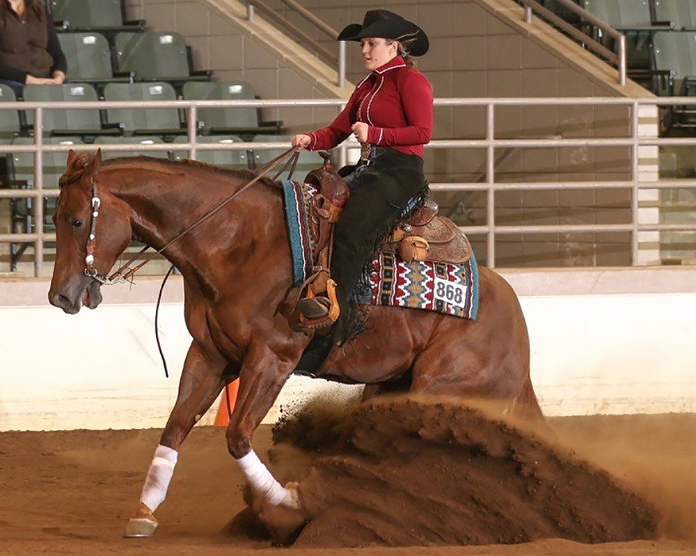 Allie Ann Wheeler, a 4-H'er from Thomas County, Georgia, will join the University of Georgia Equestrian Team next year.