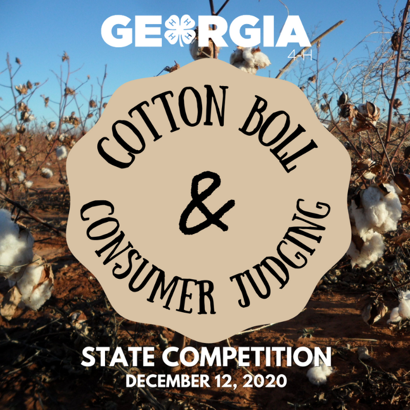 On Dec. 12, Georgia 4-H'ers participated in the Georgia 4-H State Cotton Boll and Consumer Judging Competition, which was held online.