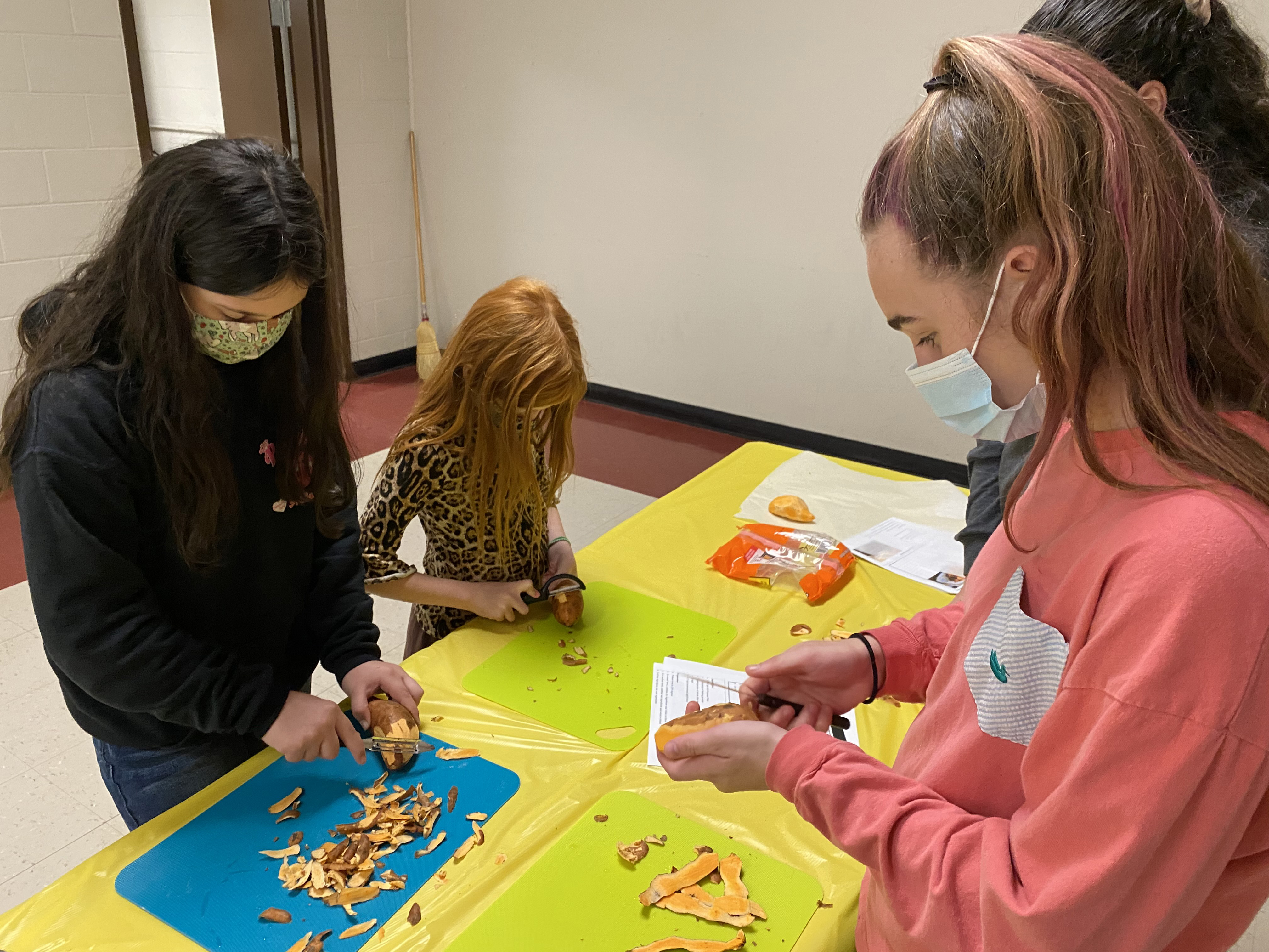 Oglethorpe County 4-H'ers prepared animal-safe treats to donate to a local animal rescue shelter.