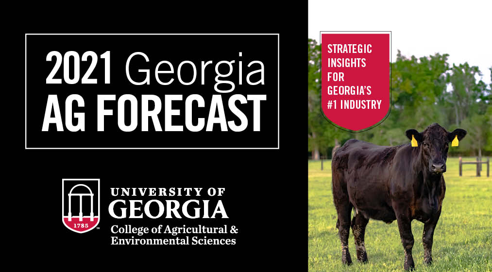 The 2021 Georgia Ag Forecast seminar will be held online at no cost starting at 9:30 a.m. Friday, Jan. 29.