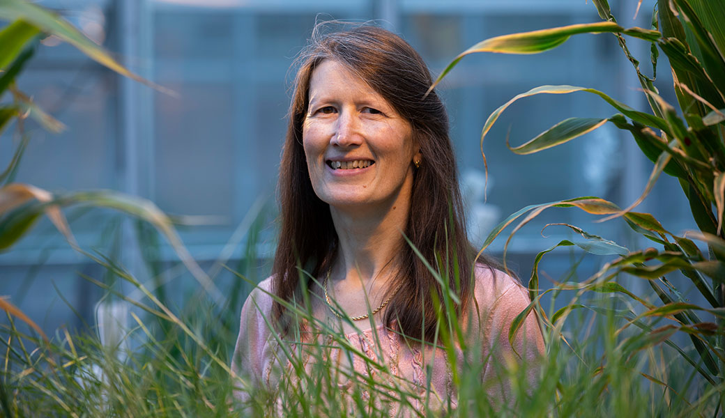 Katrien Devos and two colleagues from her lab were part of a nationwide team that produced a high-quality reference sequence of the complex switchgrass genome. (Photo by Peter Frey)