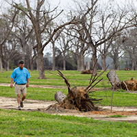 Eric Cohen walks through his family's pecan orchard at Pecan Ridge Plantation outside of Bainbridge. The Cohens cleaned up downed pecan trees and planted new ones after the destruction of Hurricane Michael in 2018.