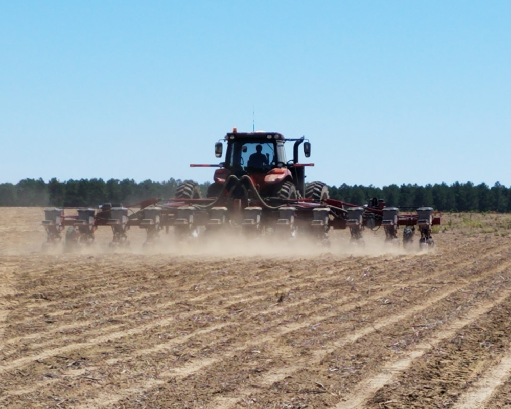 In this study, researchers examined the effects of using planter downforce technology in cotton fields with varying soil textures in differing regions across south Georgia.