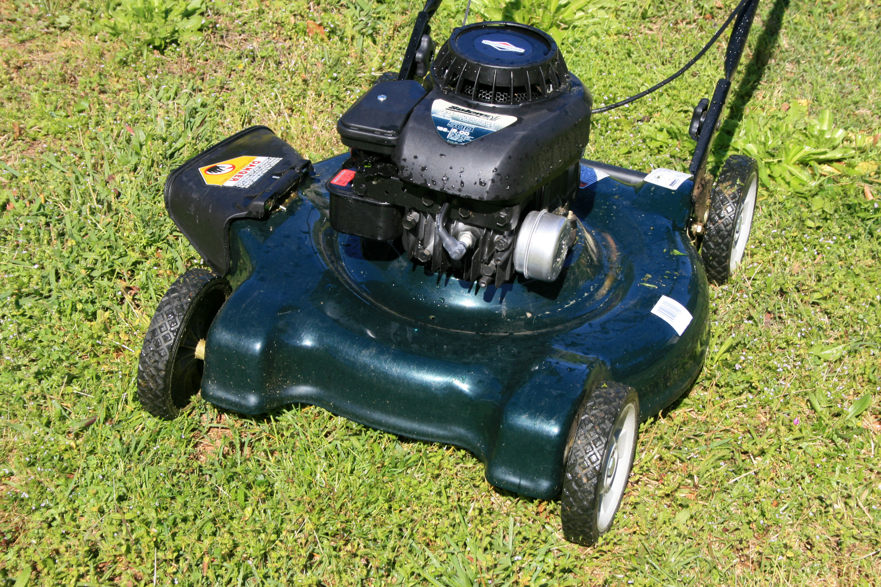 The key to a healthy lawn is knowing your turfgrass. If you are unsure what type of lawn you have, contact your local University of Georgia Cooperative Extension office for identification help. Knowing your grass type will help you manage mowing and fertilization with better results.