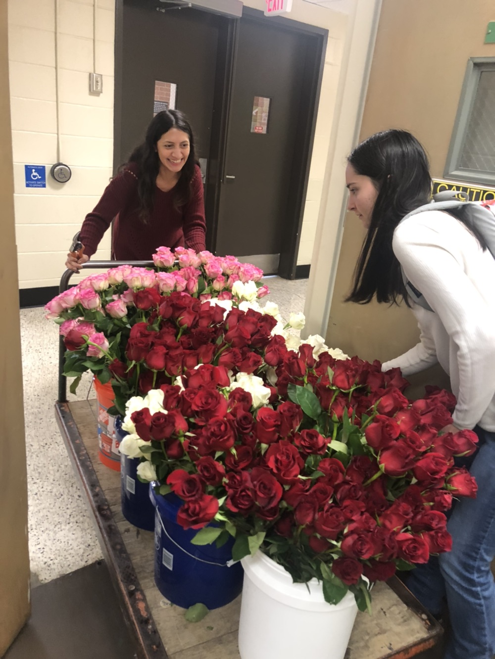 Members of the UGA Horticulture Club prepare for the cub's spring rose sale. Each year, club members sell bouquets for Valentine's Day to fundraise for club operations, trips and scholarships. (Photo taken in 2019)