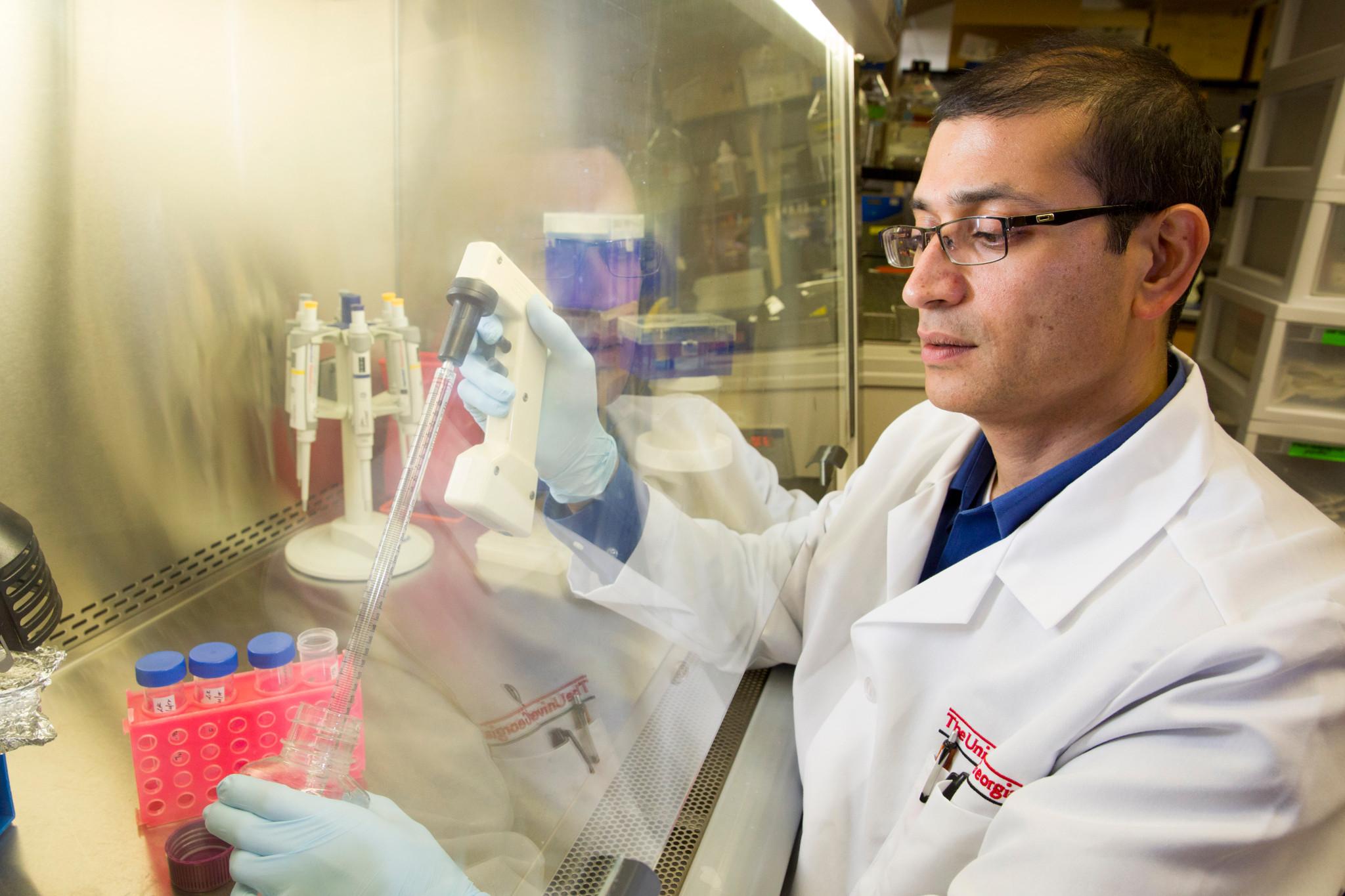 Lohitash Karumbaiah at work in his lab. (Photo by Dorothy Kozlowski/UGA)