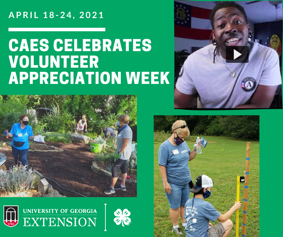 UGA Cooperative Extension volunteers contribute thousands of hours of their time and effort to support youth, family and agricultural programming throughout the state every year.
