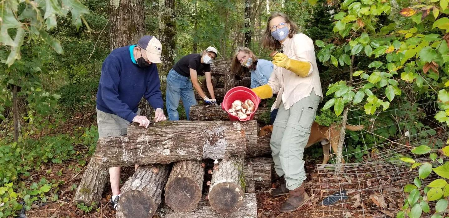 UGA Master Gardener Extension Volunteers inoculated 50 shiitake mushroom logs with the residents at Victory Home. In April, the group hosted a plant sale at the greenhouse and thrift store to raise funds for the center.