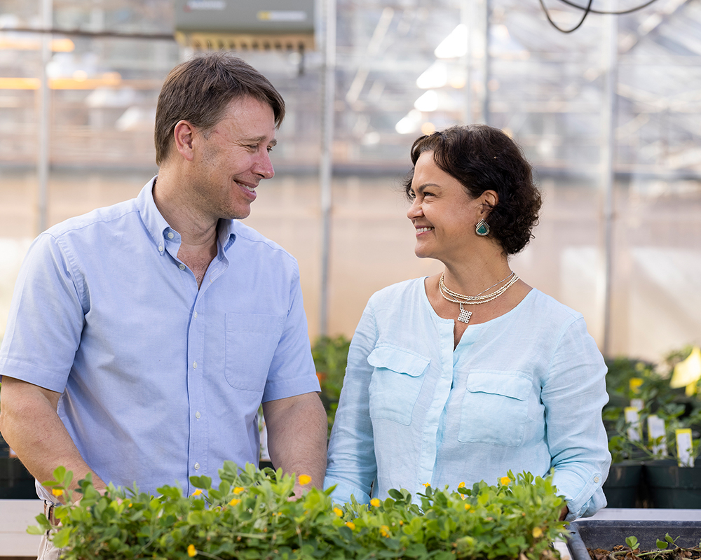 UGA peanut researchers David Bertioli and Soraya Leal-Bertioli in their greenhouses at the Center for Applied Genetic Technologies.