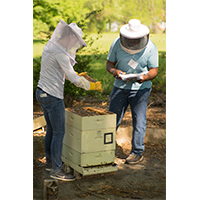 Beekeepers participated in the annual UGA-Young Harris Beekeeping Institute on the campus of Young Harris College in 2018. The event features a wide array of lectures from world-renowned bee scientists, honey-judging events and beekeeper-training workshops.