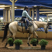 A Georgia 4-H'er participates in the ranch horse competition at the Georgia 4-H State Horse Show.