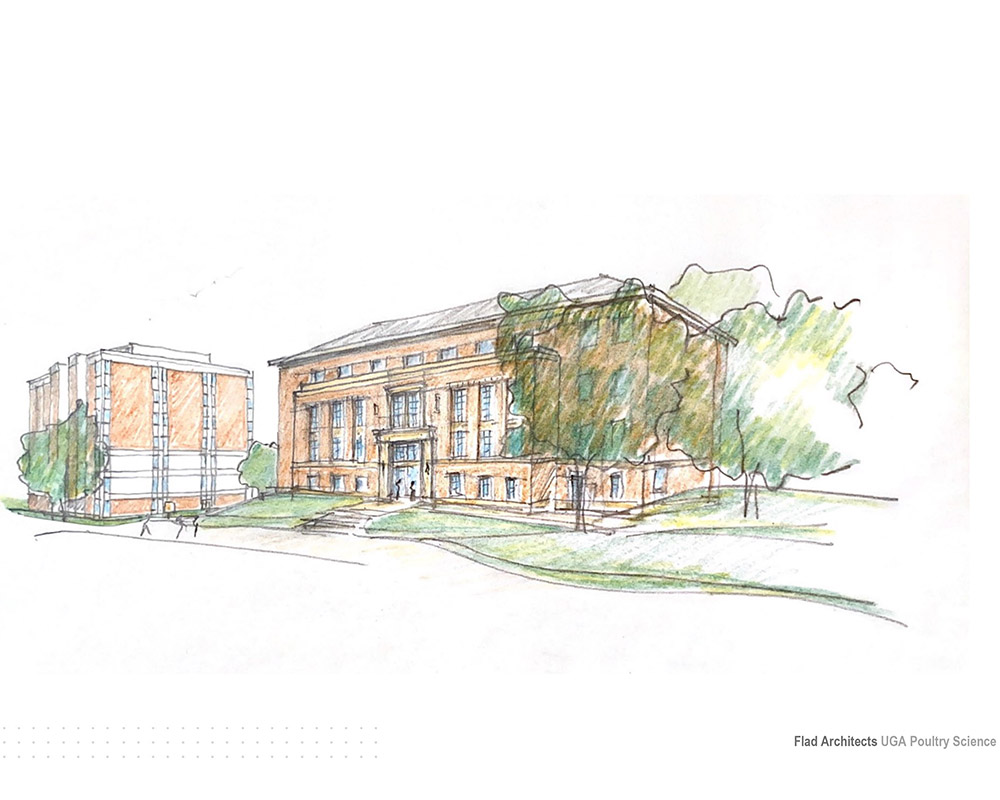 A rough sketch of the proposed design of the new Poultry Science Building to be built on UGA's South Campus where there is currently a parking lot between Boyd and Conner Halls.