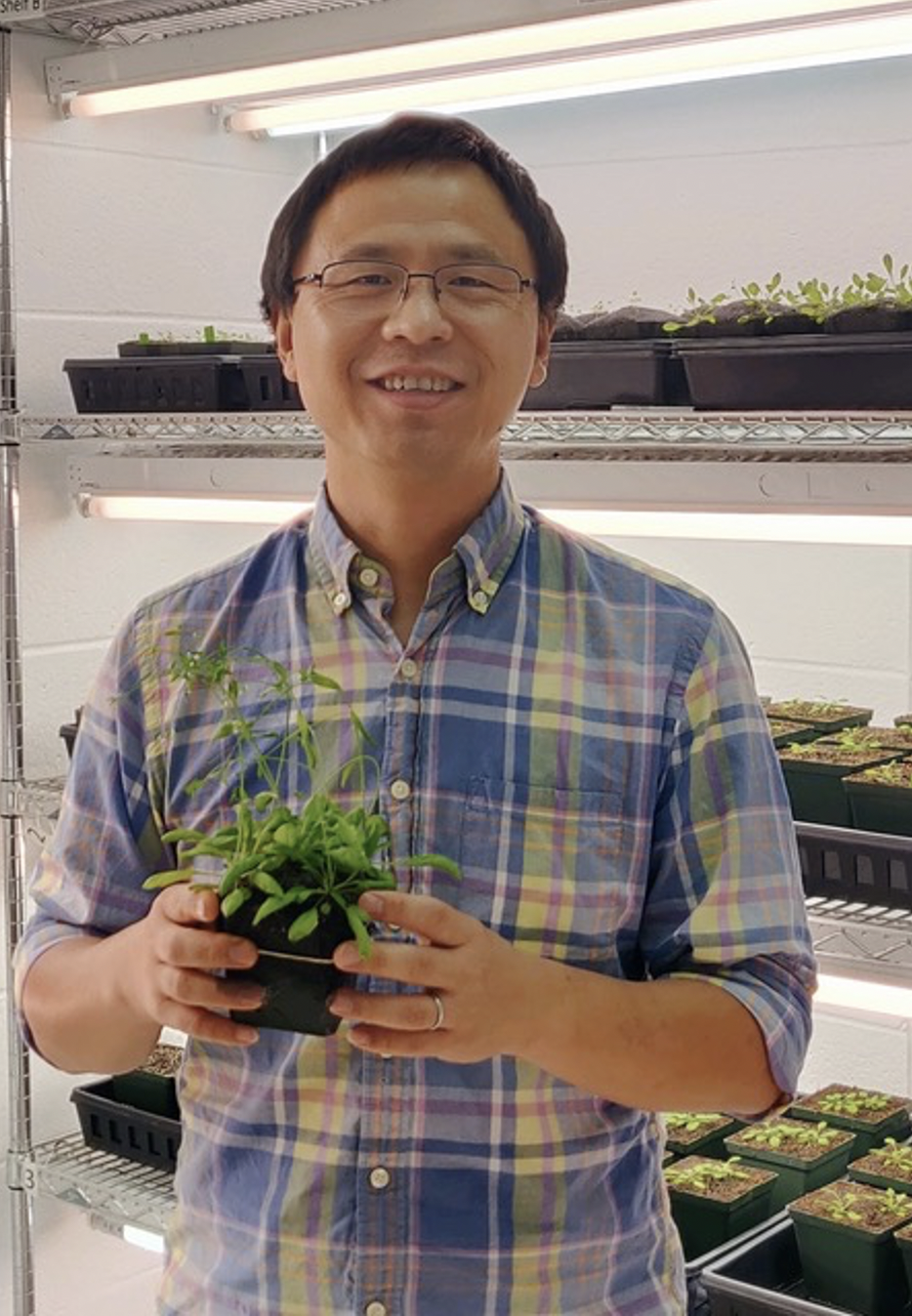 Li Yang smiles in a controlled-environment growth room with shelves of plants behind him.