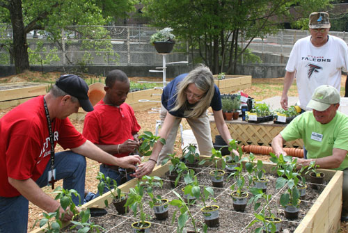 Atlanta Mission Garden 1