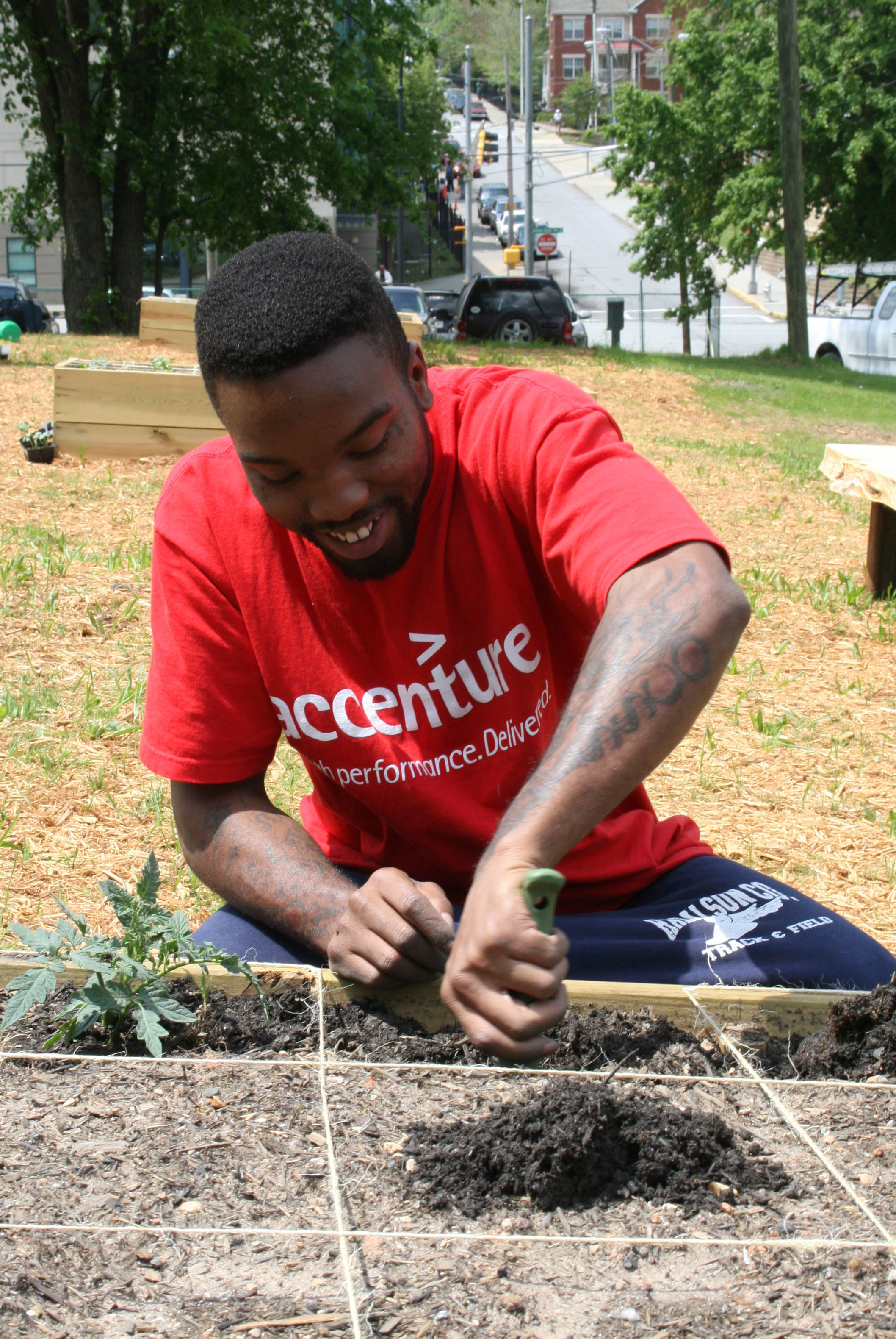 A resident of the Atlanta Mission installs tomato plants at the mission's garden.