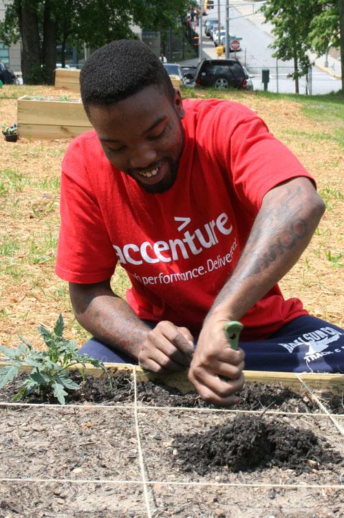 Atlanta Mission Garden 4