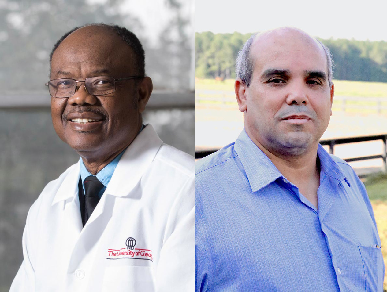 """To support efforts to isolate genes responsible for water intake, Aggrey and Rekaya have been awarded a grant through the U.S.-Egypt Science and Technology Joint Fund to pursue a project titled """"Improving the Efficiency of Water Intake Utilization in Poultry."""""""
