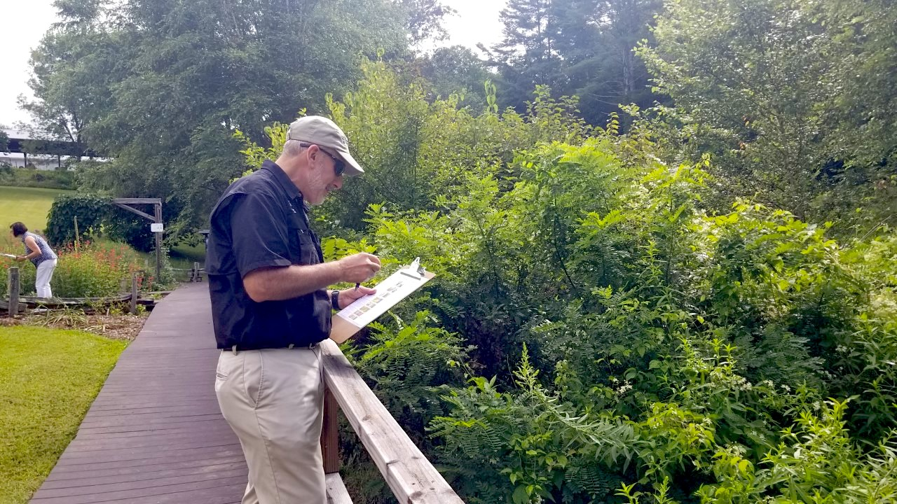 Dean Nick Place counts pollinators at the Georgia Mountain Research and Education Center