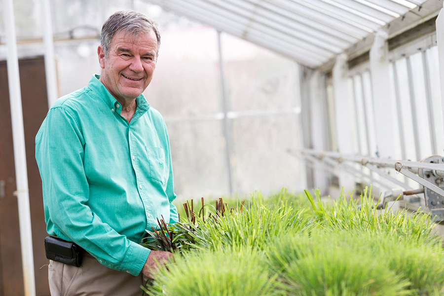 Wayne Hanna, best known for developing TifTuf, the strongest turfgrass ever produced at UGA, has established several endowments supporting research at the College of Agricultural and Environmental Sciences.