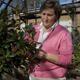 Jean Williams-Woodward, UGA plant pathologist, examines rhododendron for signs of plant disease in greenhouse, especially sudden oak death, Athens, October 27, 2009.
