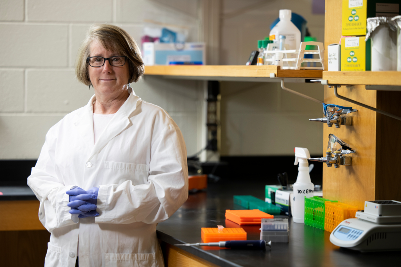 Robin Buell, who recently joined the faculty in the College of Agricultural and Environmental Sciences as the GRA Eminent Scholar Chair in Crop Genomics, has been at the forefront of genomic research, having been involved in sequencing the first plant genome, Arabidopsis, and the first crop genome, rice.