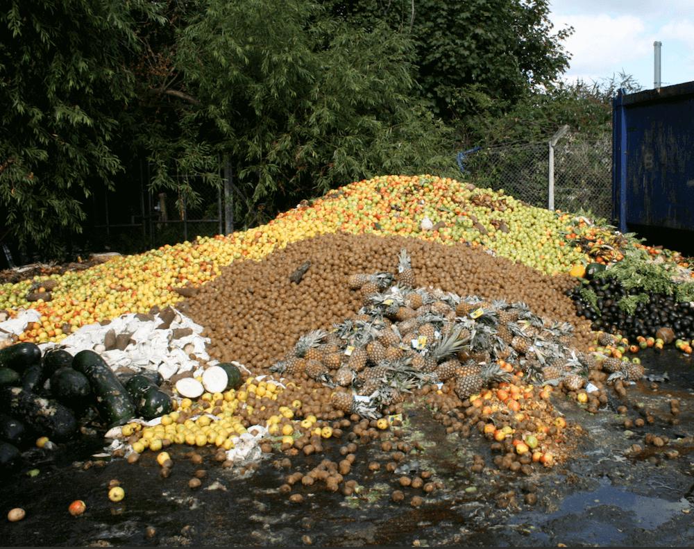 food waste (1)
