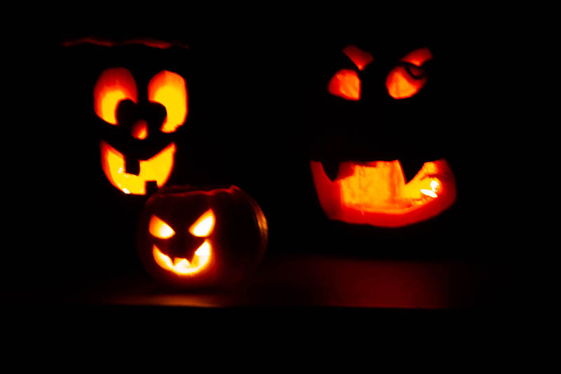 Don't toss your decorative pumpkins and jack-o'-lanterns in the trash this year, use these tips for sustainable disposal.