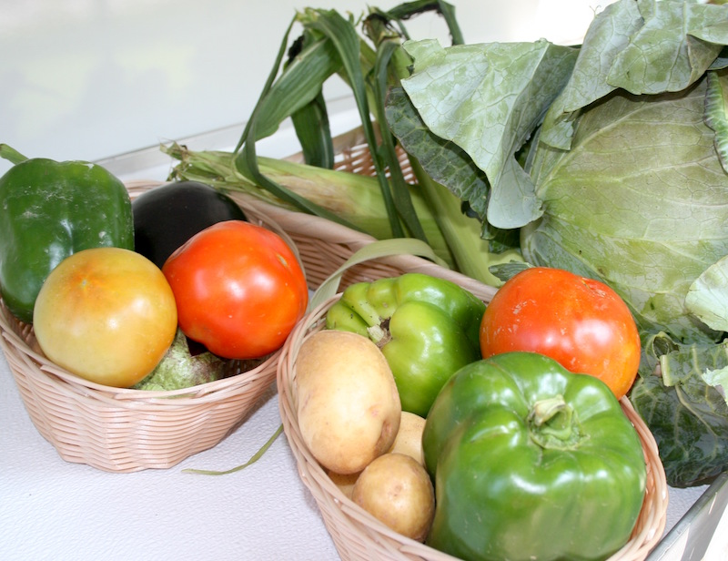 Fresh vegetables grown organically by an Elijay, Ga., farmer