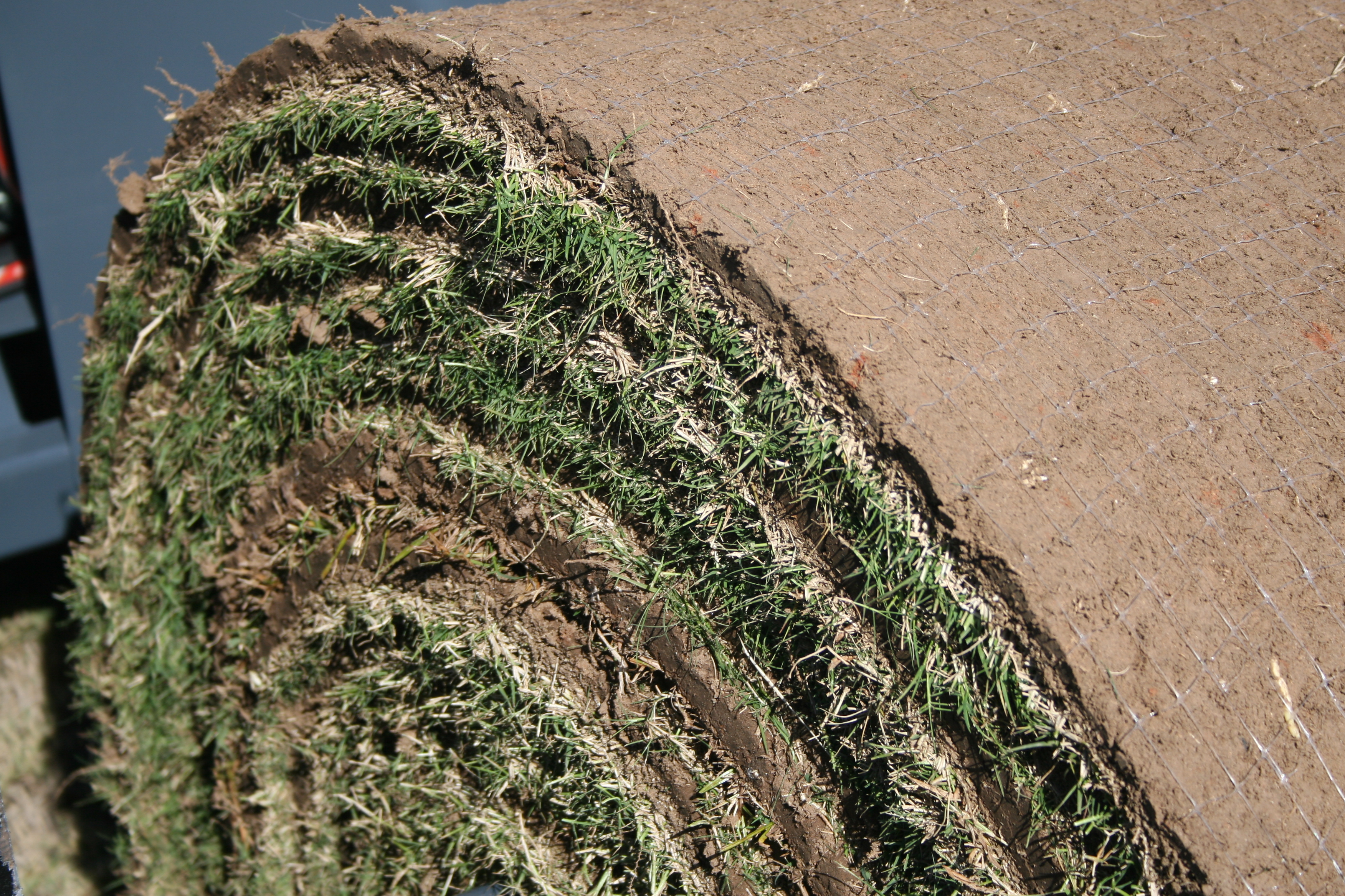 At the annual Georgia Sod and Turf Producers Field Day, industry leaders and university experts will provide updates on turfgrass-related topics.