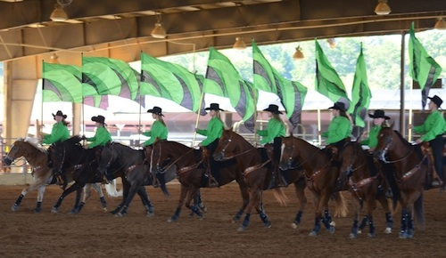 Spalding Co. 4-H Drill Team