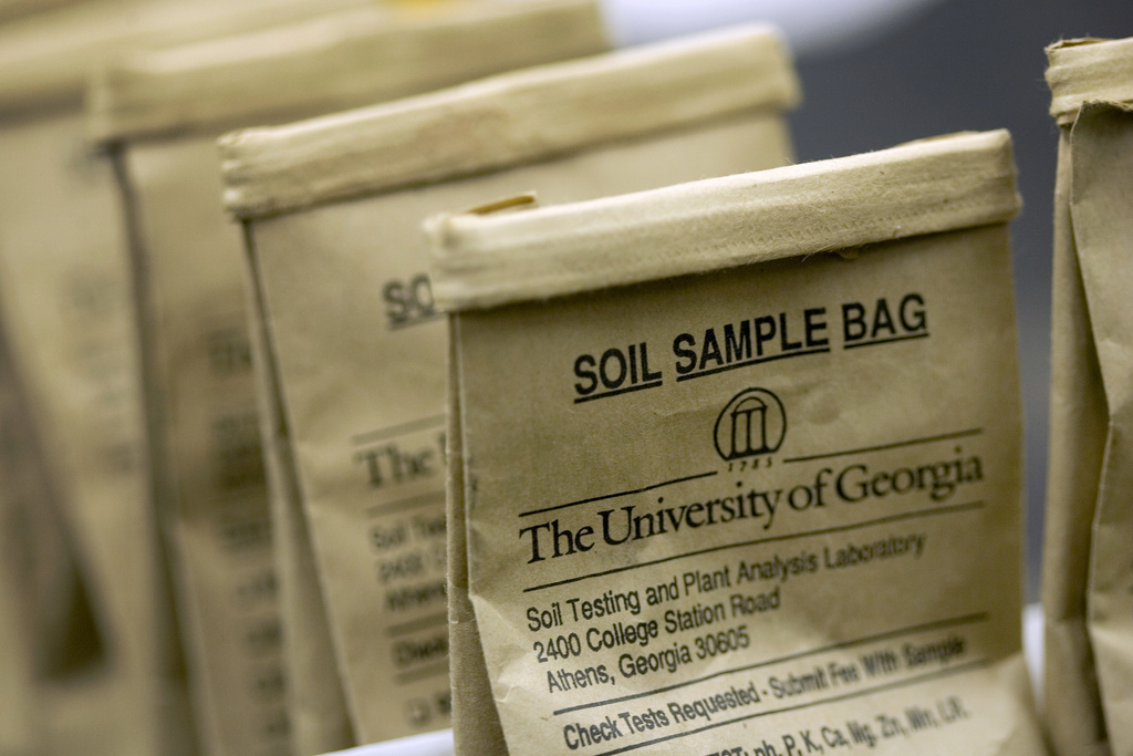 An annual soil test from the University of Georgia can save time, money and heartache in the garden.