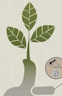 UGA GardenPro posters