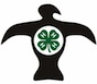 Rock Eagle 4-H Center logo