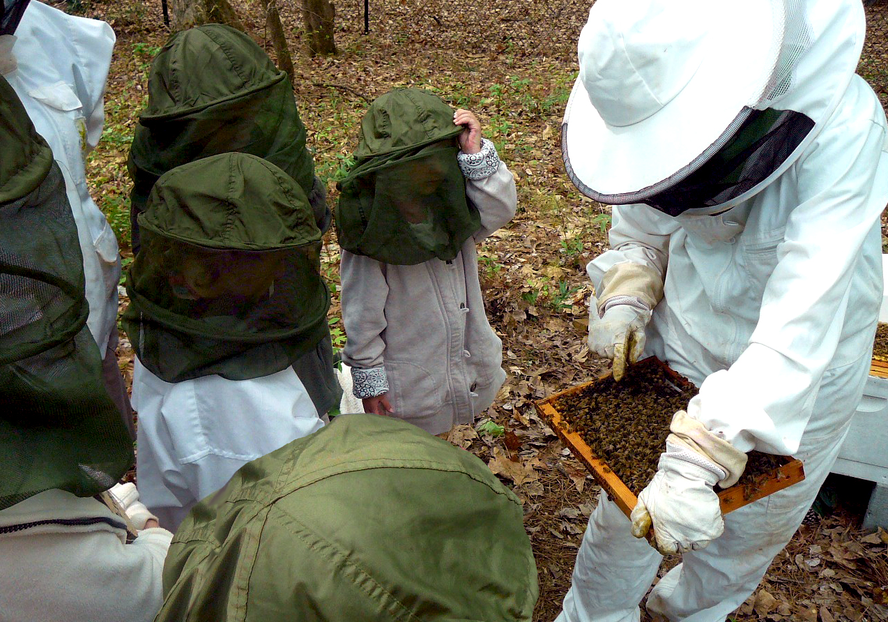 The Southwest Georgia Beekeepers Club will hold its bee school on March 29 from 8:30 a.m. until 3 p.m. at the Parks at Chehaw in Albany, Ga.